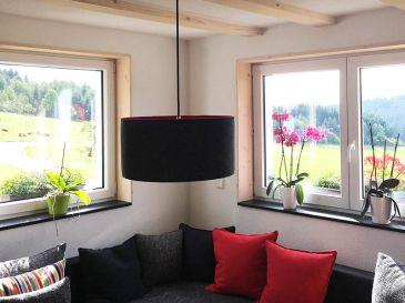 Pendelleuchte-Lampe-aus-Filz-Grosshof